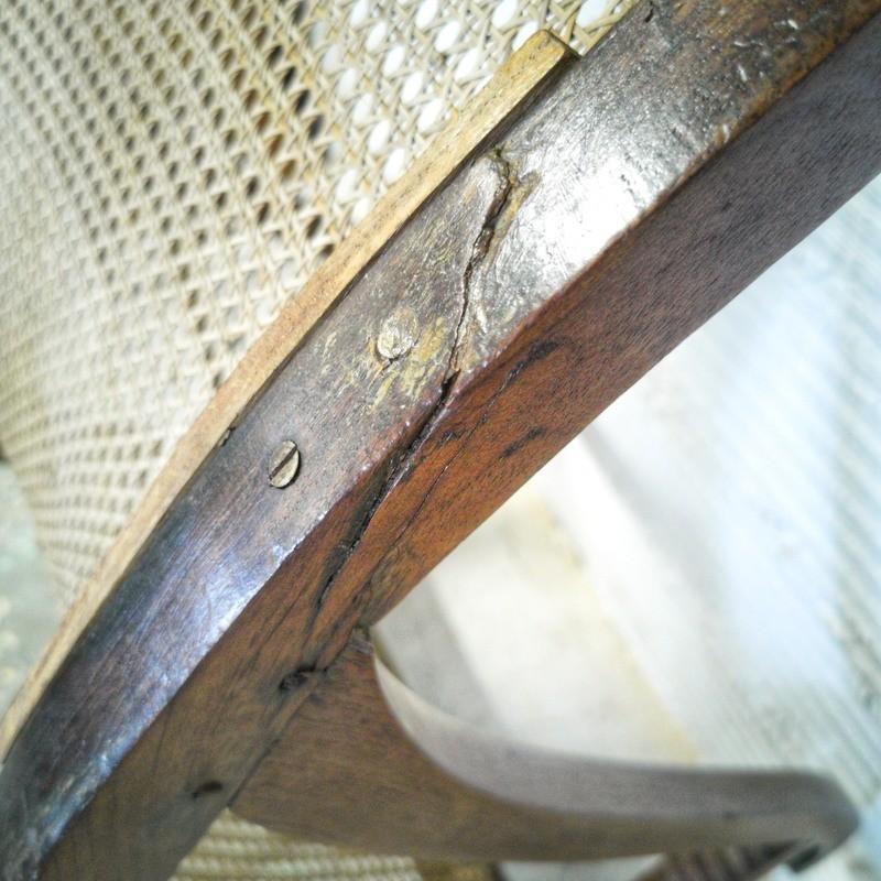 porte-manteau perroquet en bois courbé